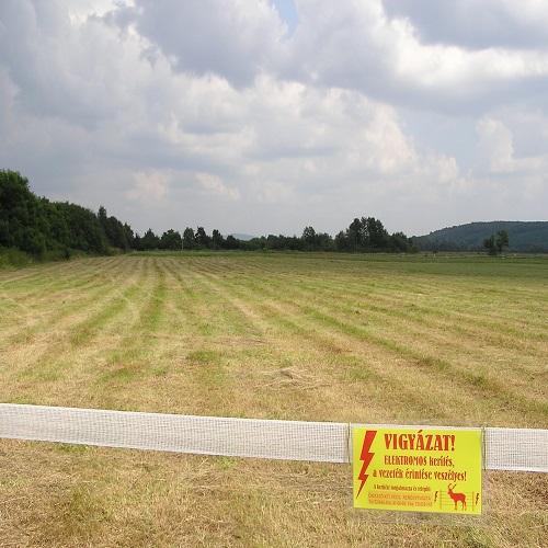Hegyszentmárton legelő